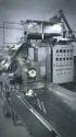 Automatic Macaroni Pasta Plant