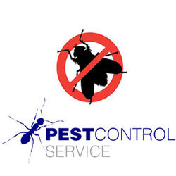 House Fly Control Service