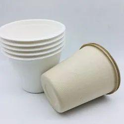 EcoRev White 120 ml Sugarcane Fibre Cup, For Event