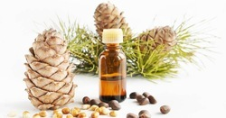 Pure Natural Cedarwood Oil