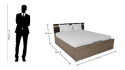 Zen Pro King Size Bed With Storage
