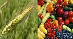 Agriculture & Foods