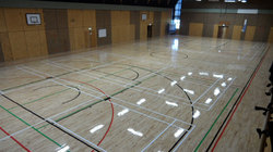 Try Square Wooden Basketball Court Flooring Service