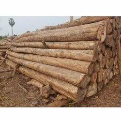 Brown Round Teak Wood Log