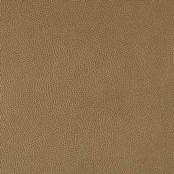 Plain Upholstery Leather