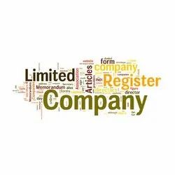 Individual Consultant Manufacturing MCA Compliance Service