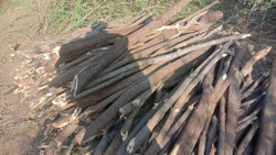 Dry Firewood Manufacturer india