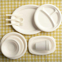 Bagasse Disposable Plates