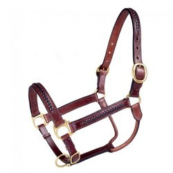 NEW Braided Leather Headcollar!!