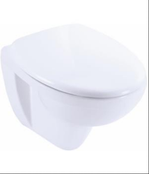 Kohler patio wall hung toilet with quiet-close seat and cover