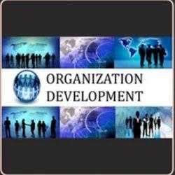 Organizational Development Service