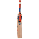 BDM Dasher 20-20 Cricket Bat