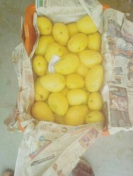Yellow Common Safeda Mango, Crate, Packaging Size: 20 Kg