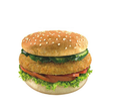 Chicken Burger Patties