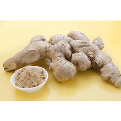 60 kg Ginger Root Powder, Packaging: Gunny Bag