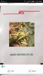 Hybrid Peasant Bottle Gourd Seed, Pack Size: 50 Gms
