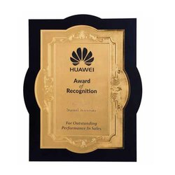 MG-893 Promotional Award