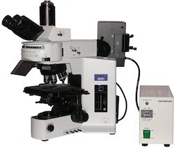 Fluorescent Microscope At Best Price In India