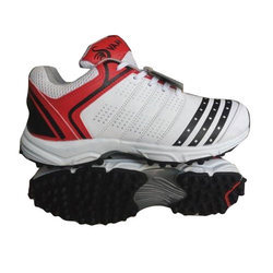 Cricket Sport Shoes