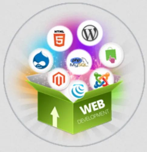 Web Development Service