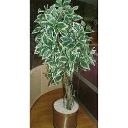 Variegated Ficus Artificial Trees
