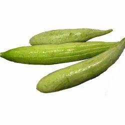 Short Snake Gourd Seeds