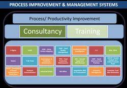 Process Improvement & Management Systems