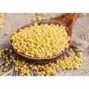 Indian Yellow Millet, Gujarat, Gluten Free