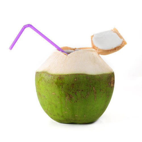 Image result for coconut water