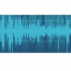 Sound Audit Service