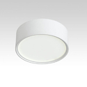 24W Delia LED Surface Down Light