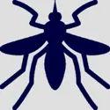 Mosquito Fogging Services