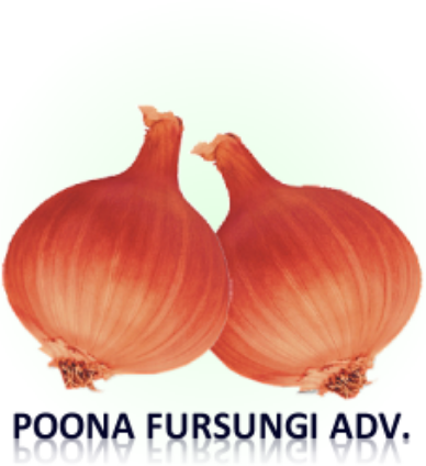 Onion Kit SOW All Year SAVE ££££ Over 2500 Seeds!