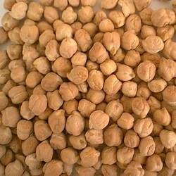 Brown Chickpea