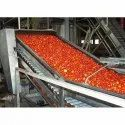 Stainless Steel Tomato Processing Line