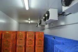 Potato Cold Storage, Capacity: 5 - 5000 MT