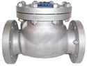 Hastelloy Check Valve