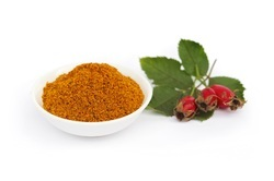 Rosehip Extract Powder