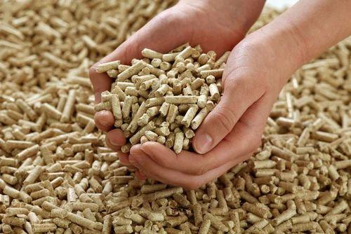 Biomass Pellets at Rs 8/kilogram | Biomass Pellet | ID: 7007793388