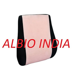 Albio Back Support with Gel Cover - Spine Lumbar Support with Adjustable Strap