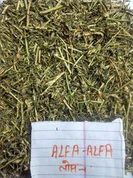 Dried Alfa Alfa Grass