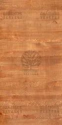 Lacewood Metalic Gold