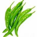 Green Chilli-hari Mirch