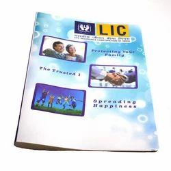 多色Classik塑料LIC文件