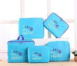 Blue Luggage Organizer