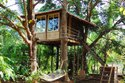 How To Build a Tree House Udaipur