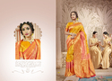HEAVY NET EMBROIDERED SAREES