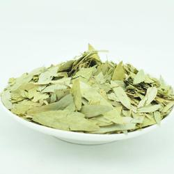 Senna Leaves Cassia Angustifolia, Packaging Size: 1/2, Packaging Type: Plastic Bag, Carton