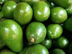 Natural Cancer Medicine Avocado
