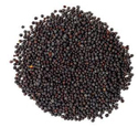 Vishal Food Black Mustard Seeds, 20 Kg